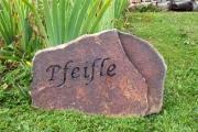 Pheifle